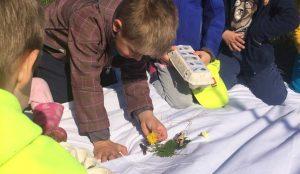 Otroci iz oddelka Kamencki, enote Studeno so raziskovali v bliznji okolici 22