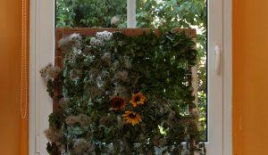Zelena okna v Postojni (turistična akcija) 13